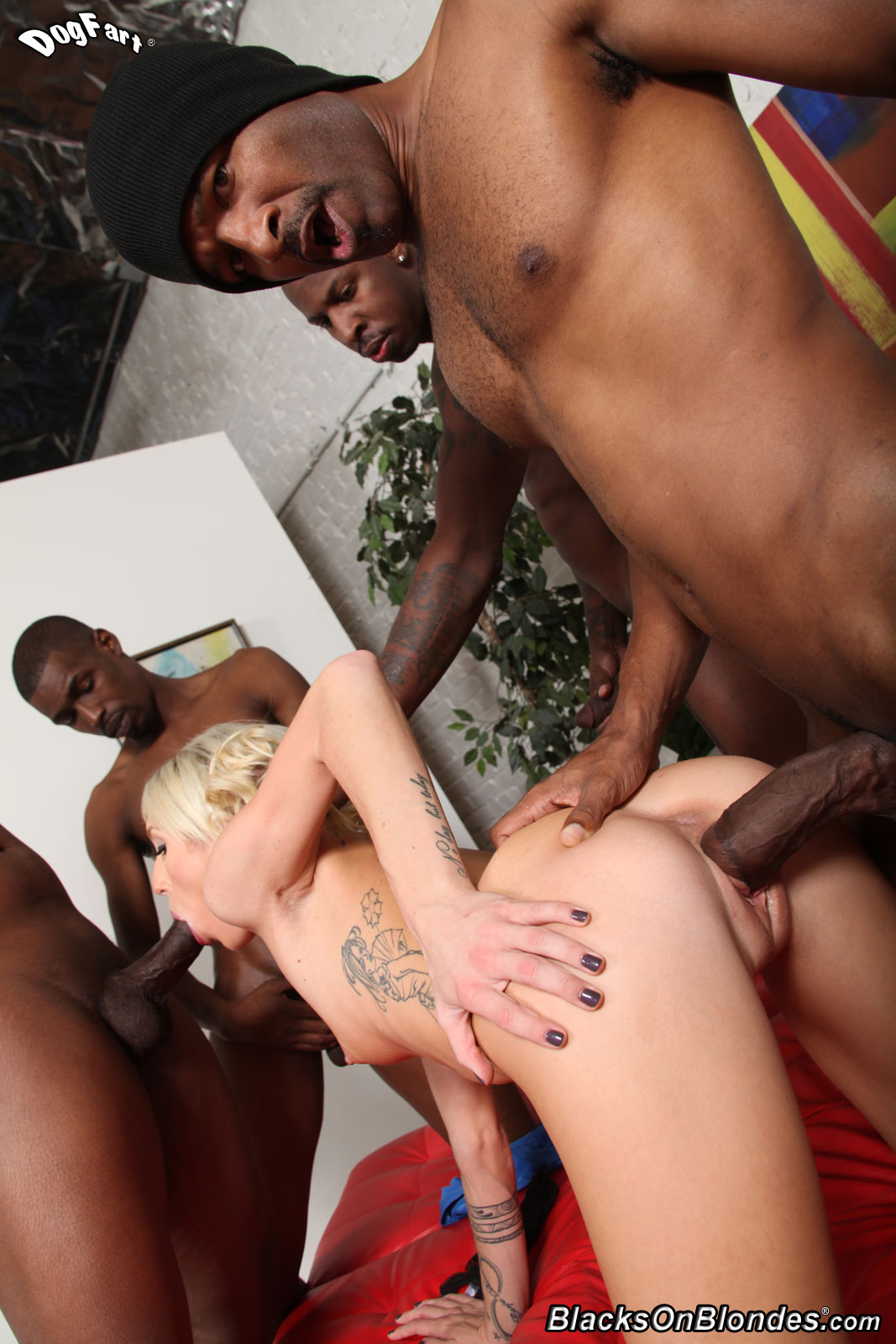Join told Xxx blacks on blondes more